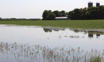 Report flooding damages ~ Jackson County